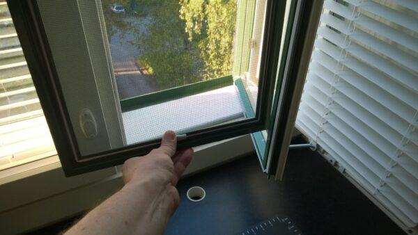 Hyttysverkon irrotus. Ikkunan hyönteispuitteet talvisäilöön.